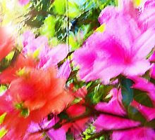 Azalea Abstract  by Terri Chandler