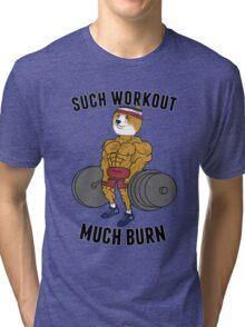 Such Workout, Much Burn Doge Tri-blend T-Shirt