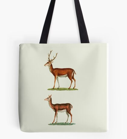 Male & Female Deer (1830) Tote Bag