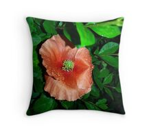 Flower in the rain Throw Pillow