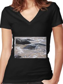 Rocks in the Water Women's Fitted V-Neck T-Shirt