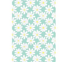 Bright Happy Daisies on Mint Photographic Print