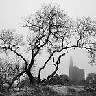 Phoenix Mine - Bodmin Moor by John Burtoft