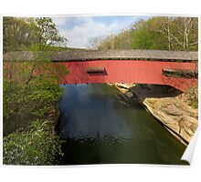 Narrows Covered Bridge at Turkey Run Poster