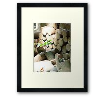 Life in the face of adversity Framed Print