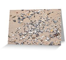 Shells and Pebbles at the Beach Greeting Card