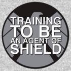 Training to be an Agent of Shield by Derek Mitchell