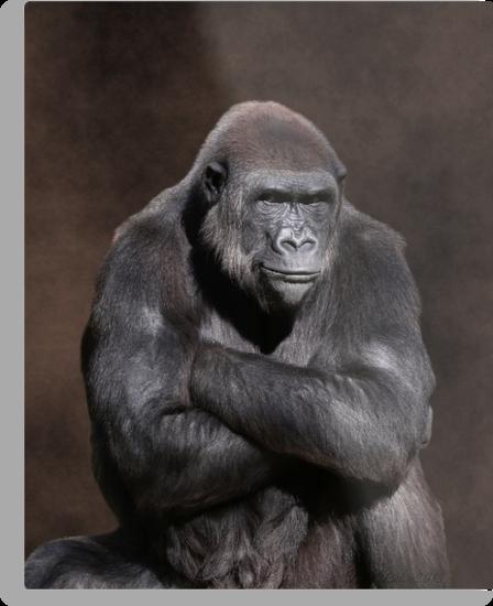 Gorilla with Attitude Metal Print
