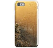 11.6.2016: Cold Summer Morning iPhone Case/Skin