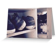 Åse cat shelf hello Greeting Card