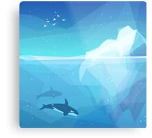 Landscape of northern and Antarctic life Metal Print