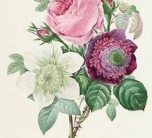 Rose, Anemone and Clematis by Bridgeman Art Library