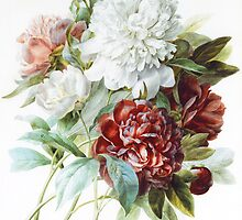 A Bouquet of Red, Pink and White Peonies by Bridgeman Art Library