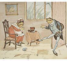 An illustration from 'A Frog He Would A-Wooing Go' Photographic Print
