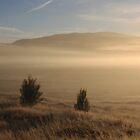 Black Valley mist 2 by Duncan Cunningham