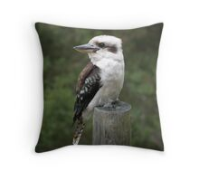 The Pole Sitter. Throw Pillow