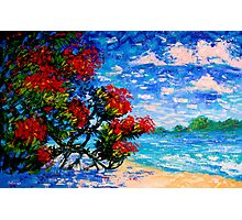 Crimson Bloom Red Flower Tree at the Beach Blue Sky Landscape Oil Painting by Ekaterina Chernova Photographic Print