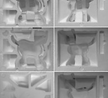 Polystyrene Cybie Cat Box. by - nawroski -