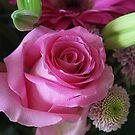 Pretty Rose by Gilberte