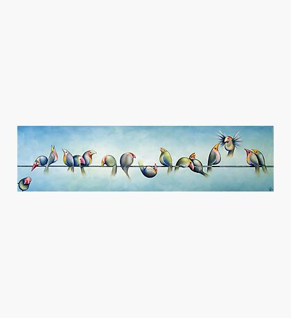 Finches On Parade Photographic Print