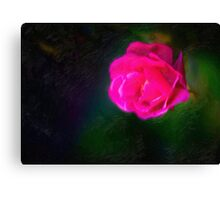 Rose In Oil 001 Canvas Print