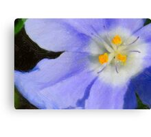 Wildflower In Oil Canvas Print