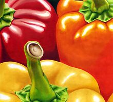 Rainbow of Peppers by corystill