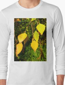 Golden Leaves Long Sleeve T-Shirt