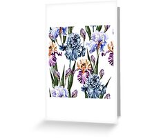 Dutch iris print Greeting Card