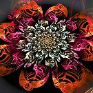 Satin Flower by James Brotherton