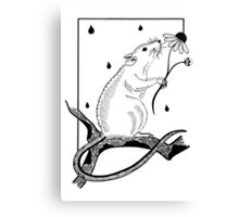 Rat on a bough with daisy Canvas Print