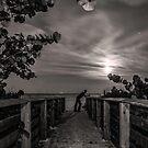 Moonlit by Michael Damanski