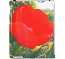 Red Flower in Lancaster iPad Case/Skin