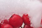 Berries in the Snow, As Is by Kim McClain Gregal