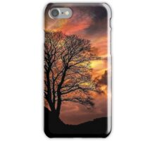 Sycamore Gap, Hadrians Wall iPhone Case/Skin