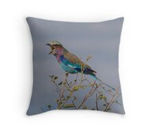 Lilac Breasted Roller Singing-Botswana Throw Pillow