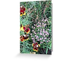 Beauties in the Wild Greeting Card