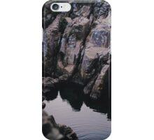Pastel lichen iPhone Case/Skin