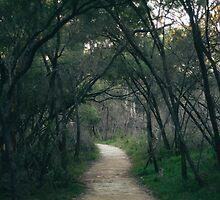 Journey's End. by strangerandfict