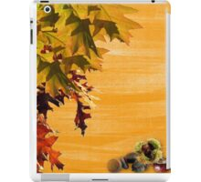 amazing nature iPad Case/Skin