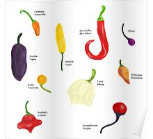 Chilies Galore! Poster