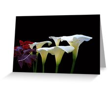 Lilies In Spring Greeting Card