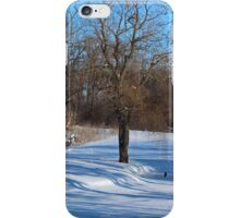 A Heron in the Distance iPhone Case/Skin