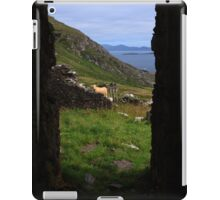 View From A Lighthouse Ruin  iPad Case/Skin