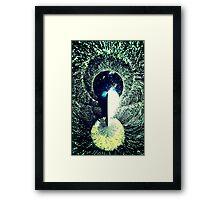 Love Garden Framed Print