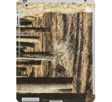 Urban Wood iPad Case/Skin