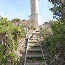 End of Track to Lighthouse, 'Beachport' Limestone Coast, S.A. by Rita Blom