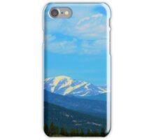 Panoramic  iPhone Case/Skin