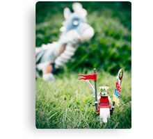 Happy St George's Day [17.5/52] Canvas Print
