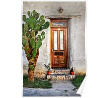 Wood Door In Tuscon Poster